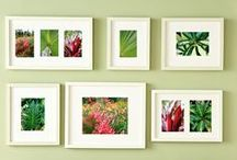 Gallery Wall Ideas / Ideas for constructing and arranging a gallery wall