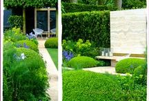 RHS Chelsea Flower Show 2014 / My first visit to the iconic flower show.