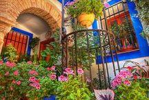 Spain...Spanish