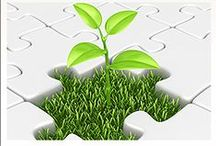 Go Green! / Star goes green with their building products and techniques. We use retrofit roofing, solar, insulated wall panels, and much more to protect the environment and to be cost effective.