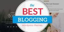 Best Personal Blog WordPress Themes / Best Personal Blog WordPress Themes