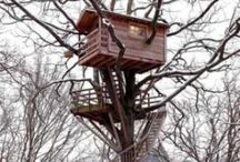 Tree Houses / by Ge Ferris