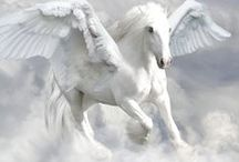 Pegasus¨and Unicorn