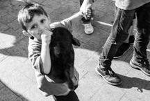 Refugees by Bulcsu Osi