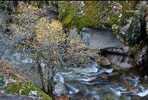 Otoño / #Paisajes de #otoño españoles #landscapes #automm #fall