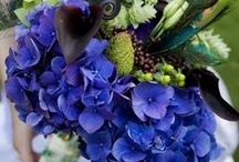 Bouquet inspiration / Pretty flowers to tickle the eyes and nose...