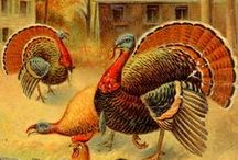 Reading Readiness - Thanksgiving Unit / Oral Language