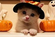 Halloween!!!! ^_^`