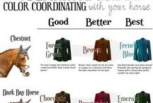 Horse and Rider Wear