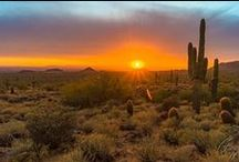 Mesa Sunsets, Views & Venues! / Gorgeous surprises as you explore Mesa, Arizona whether visiting with family or solo for business or pleasure. With so many beautiful sites for weddings and events, photography enthusiasts, nature adventurers, be sure to pack that camera every time you leave your hotel room!