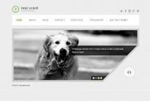 Web: Wordpress Themes