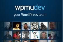 Web: Wordpress Tools