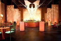 Trinity Repertory Pell Awards 2012- Viloa Davis / The Pell Chafee Center, Providence RI