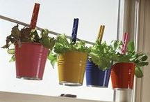 Green Life / DIY natural and ecological ideas, for our home and our garden!