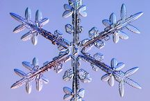 Snowflakes and Ice Crystals / by Caroline