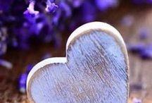 ...levanduľa...lavender... / ...love it...