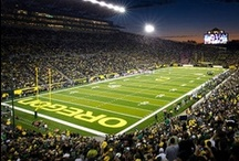 Oregon Ducks / Ulife provides officially licensed University of Oregon and Oregon State University iPhone 4 & 5 cases, Samsung Galaxy S3 cases, laptop sleeves, travel pillows and more... / by Ulife