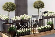 Balcony Gardening Inspirations