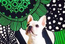 Marimekko Pets and Animals / Adorable pets and animals with Marimekko items!