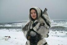 Arctic Fox / by Julliet Martine