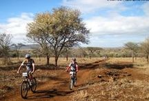 """Rhino Ride- Bush Cycle / Annual #RhinoRide is a festive weekend of Mountain Biking on the Zululand Rhino Reserve, covering 70 kms over 2 days. """"Cycling with a difference – Cycling to make a difference"""""""