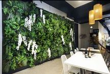• Wall Garden Designs • Completed Vertical Wall Projects / Floral by Design creates spectacular vertical gardens that can transform any home or business space into a stunning visual showpiece. We offer a comprehensive design and selection service for all of our commercial and residential clients.