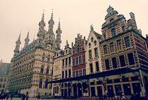 Leuven, Belgio / Marzo 2013