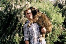 Ryan Gosling / Ryan Gosling