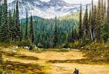 •Into the Wilderness• / Backpacking, hiking, camping tips & photography