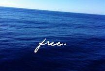 cdf: free / 2014