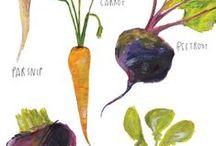 Овощи / фото и картины овощей