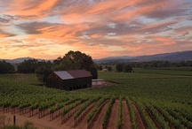 Home Sweet Home (Northern California) / by Cindi Spengler