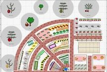 Garden Planning / by Denise Wilson