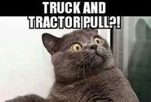 Tractor fun / Tractors make you happy!