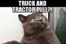 Tractor fun / Tractors make you happy!