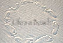 Life's a Beach / by Anne Carroll
