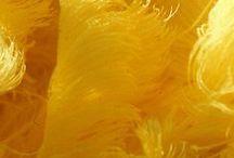 Yellow / NO PIN LIMIT . . . HAPPY PINNING!!