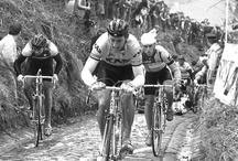 #Cycling Celebration