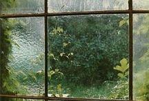 + Windows / by Amy Obermeyer