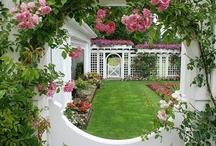 For My Secret Garden
