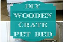 DIY (Do It Yourself) Pet Projects / For all you crafty cat and dog parents out there!