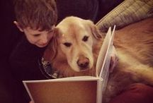 Dogs: Great Book Buddies / What a joyful way that dogs can help young readers. Curl up with a good book and your furry friend!