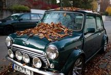 classic car&&& / by wannly c