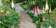 Garden Paths / All about paths for your garden. From formal to rustic. DIY instructions.