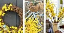 Spring Decor Projects DIY / Indoor and outdoor spring decor and projects. DIY and inspirational ideas.