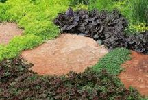 Ground Cover Plants / All types of plants that make great ground covers in your garden to hide the black dirt and suppress weeds. Many will tolerate light foot traffic, make great lawn substitutes.