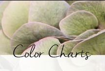 H-H   Color Charts / Use our color charts to pick your perfect Hydrangea!