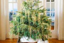 Christmas / Celebrating & decorating for Christmas :) :)