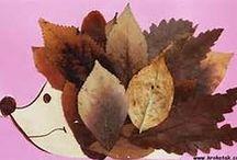 LEAF ART - SEED ART - FLOWER ART etc. / Leaves - Foglie - Feuilles - Blättern - Hojas Seeds - Semi - Pépins - Samen - Semillas Flowers - Fiori - Fleurs - Blumen - Flores