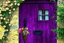Colors / by Alan Michael